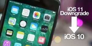 Preparations for downgrading Ios 10
